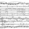 Mozart's twenty-seven piano concerti represent the absolute apotheosis of the form: in the same way that Haydn perfected the string quartet, Mozart took the piano concerto and brought it to...